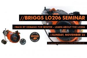 Briggs LO206 Seminar MRP