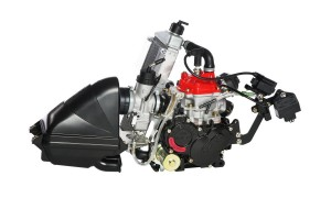 Rotax Senior engine evo