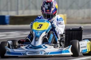 Ricciardo-Monza