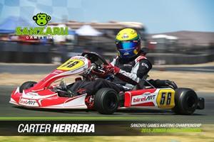 Sanzaru-Carter Herrera
